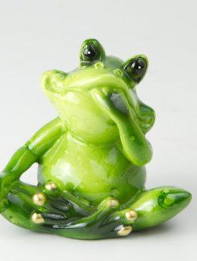 Задумчивая лягушка