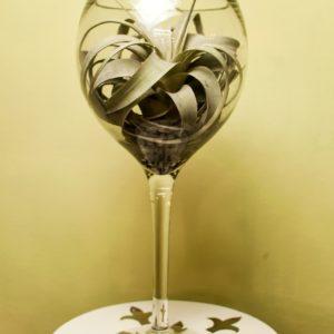 Флорариум Зелень в бокале