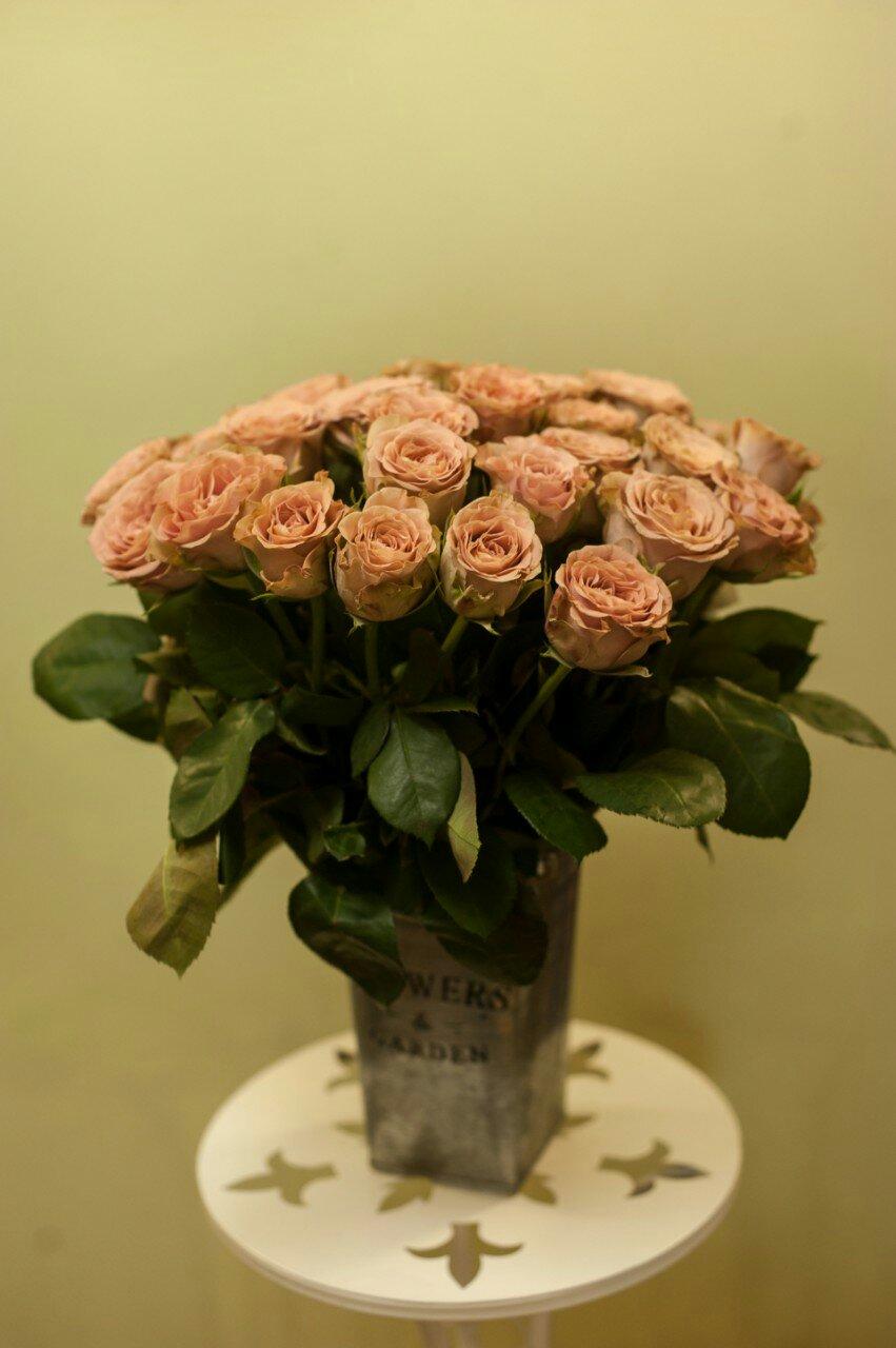 roza_kapuchino
