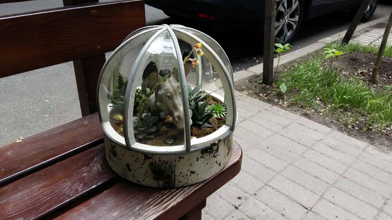 florarium_zoo_1