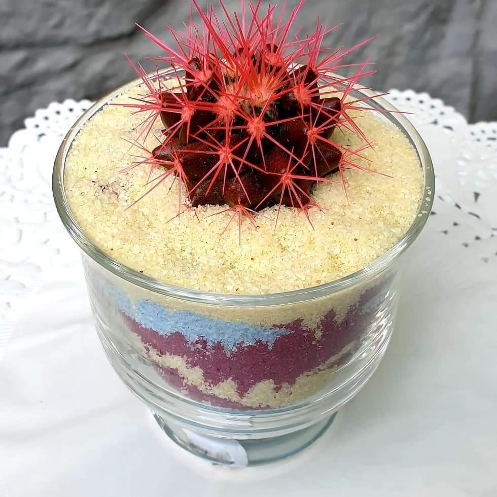 veseliy-kaktus-02